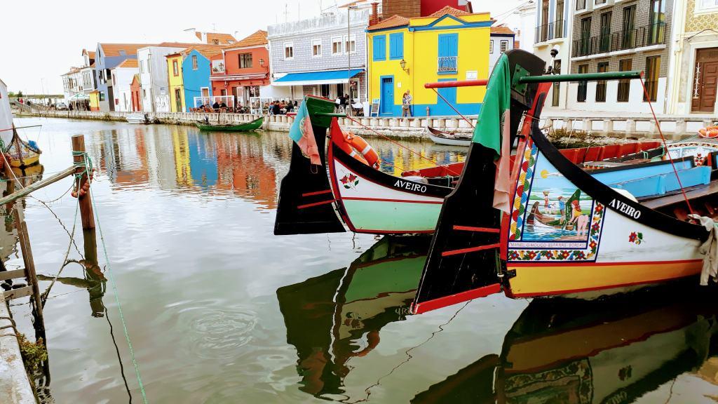 Moliceiro-Boote