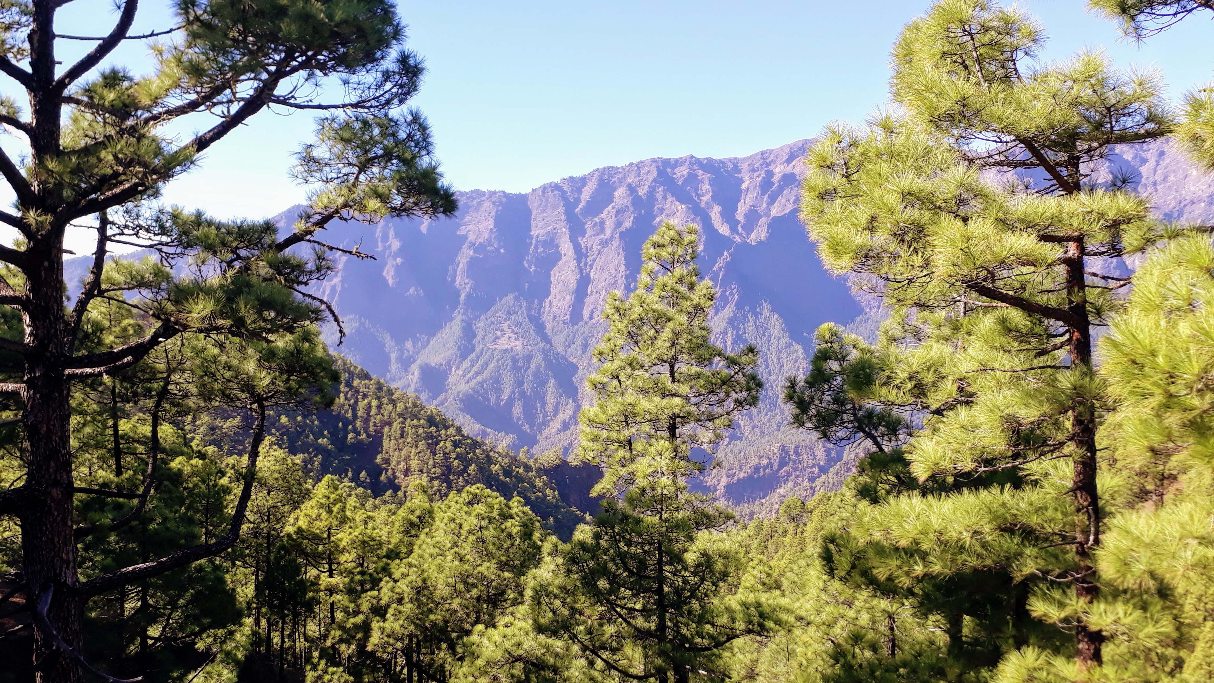 Blick auf den Kraterrand der Caldera de Taburiente