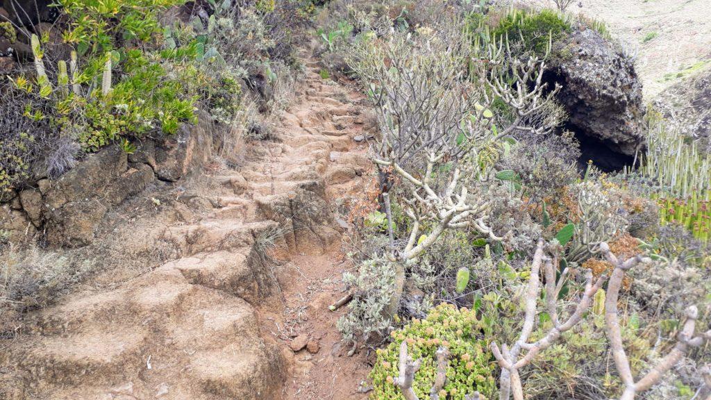 Wanderweg Chinamada – Punta del Hidalgo