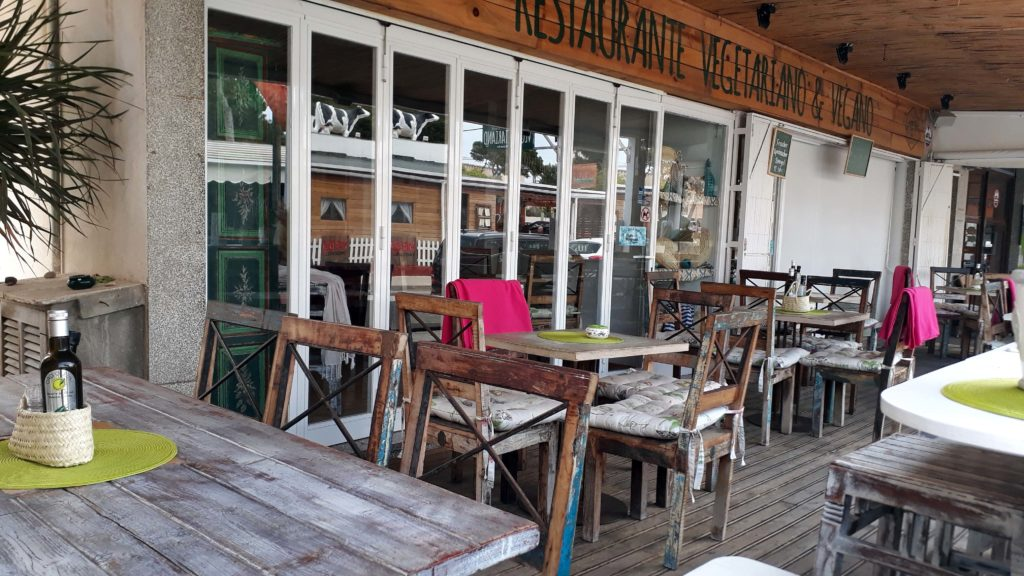 The Green Box, vegetarisches Restaurant in Cala Ratjada, Mallorca