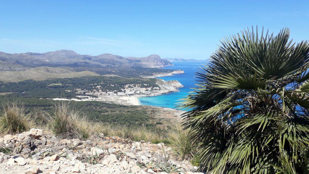 Blick auf die Bucht Cala Mesquida vom Talaia de son Jaumell