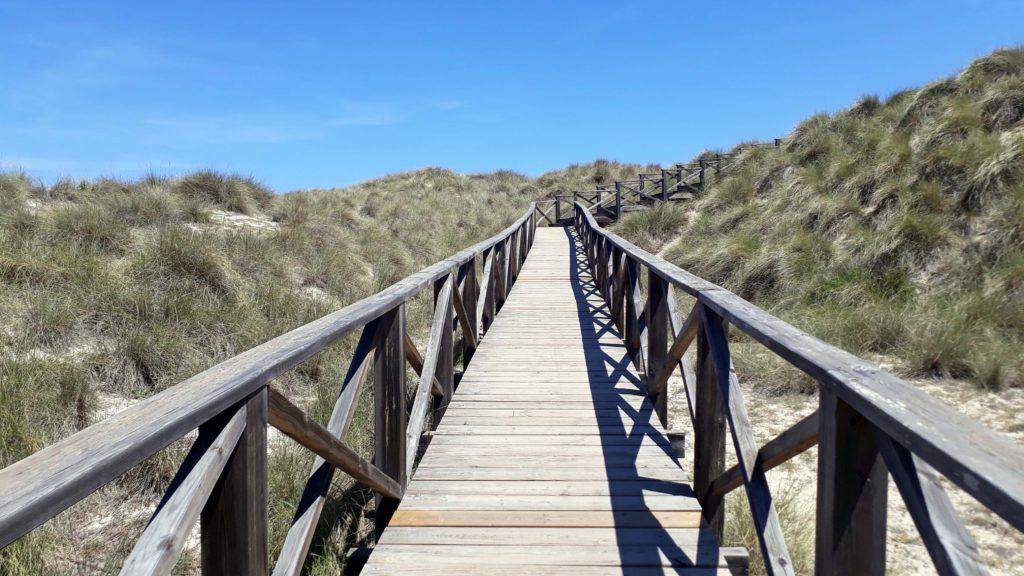 Ein Holzsteg führt über die Dünen der Cala Mesquida