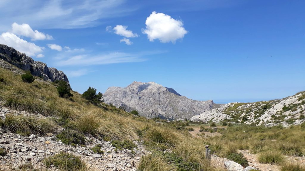 ...und taucht mit uns in die Gipfelwelt von Mallorcas Bergen ein