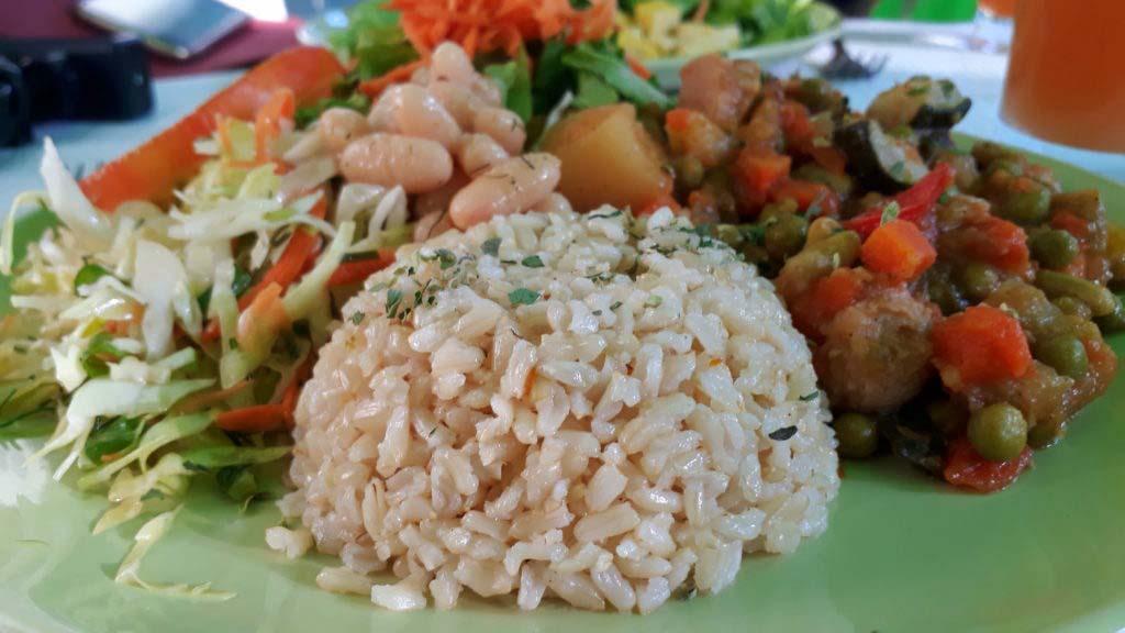 Oasis Vegetariano