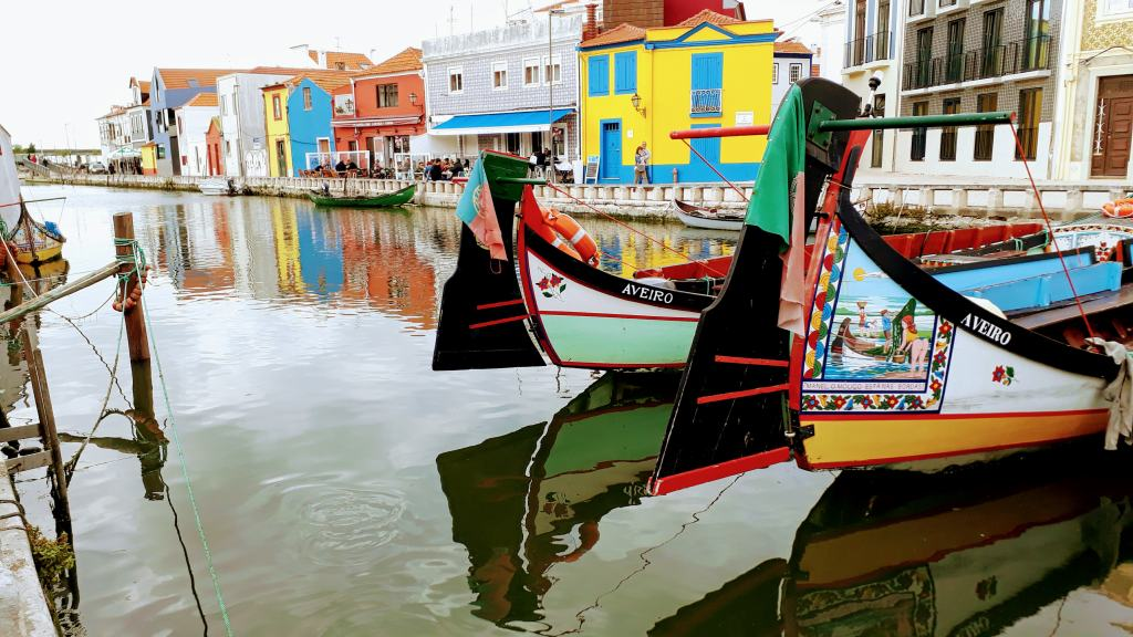 Moliceiro boats