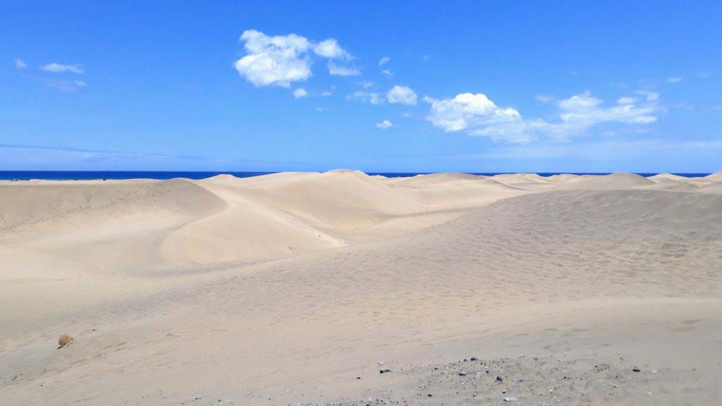 Dunes of Maspalomas in the south of Gran Canaria