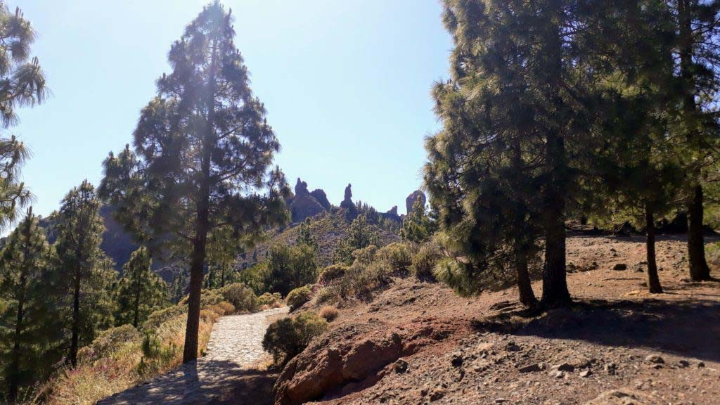 Monk, Frog & Roque Nublo from afar