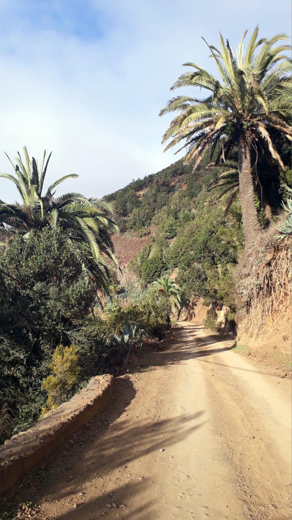 Camino de grava al Parque Nacional de Los Órganos