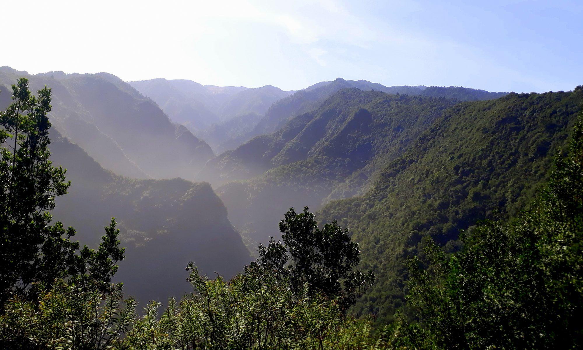 La Palma: La Isla Bonita