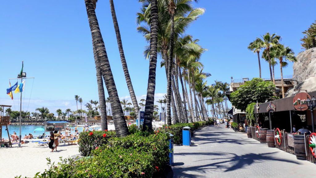 Paseo por la Playa de Anfi