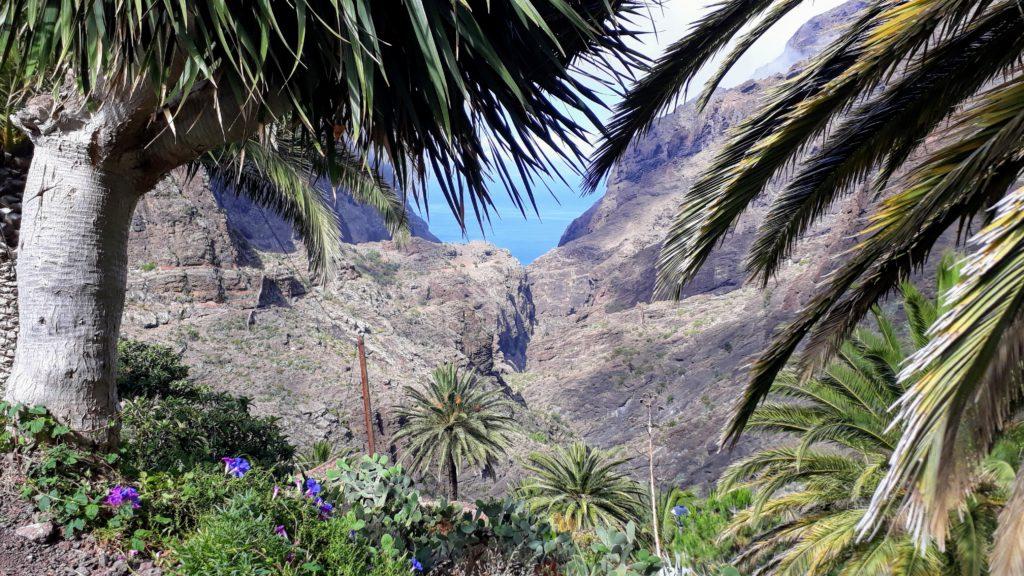 El cañón más famoso de Tenerife: el Barranco de Masca en elMacizo de Teno